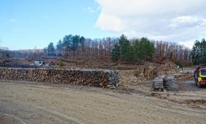 Σκουριές Μάιος 2013, Το δάσος χάνει έδαφος